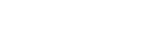 TheSaleroom Logo