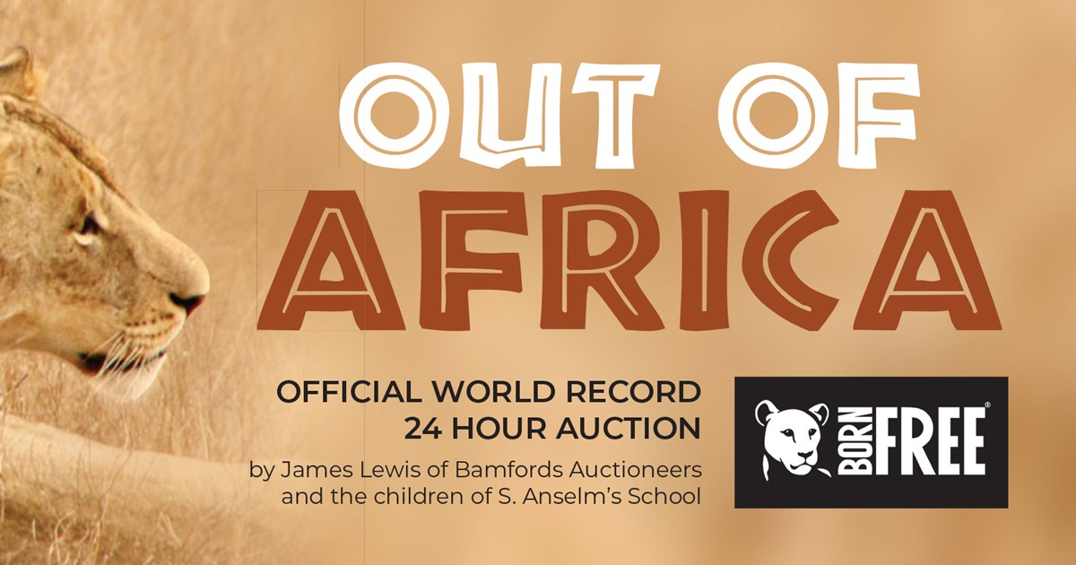 Official World Record Charity Auction Image
